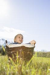 Little boy sitting in a wicker basket on a meadow - OJF000068