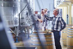 Wine makers testing wine blend - ZEF002076