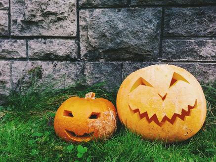Halloween pumpkins - ALF000247