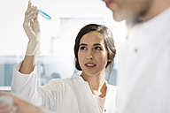 Scientists checking a test - FKF000865