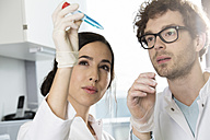 Scientists checking a test - FKF000871