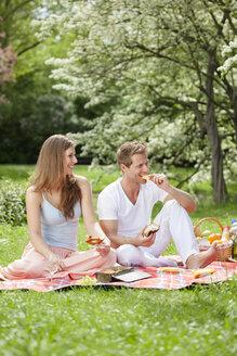 Happy couple having a picnic in park - CvK000194