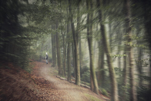 Germany, near Wuppertal, Man standing on forest path, digital manipulation - DWI000292