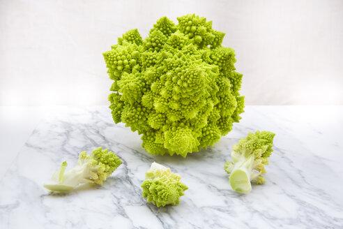 Romanesco, Brassica oleracea convar. botrytis var. botrytis, on white marble - LVF002213