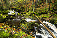Germany, Bavarian Forest National Park, Steinbachklamm in autumn - STSF000598