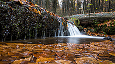 Germany, Bavarian Forest National Park, Steinbach, Waterfall in autumn - STSF000596