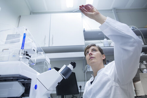 Young female natural scientist working at laboratory - SGF001079