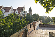 Germany, Baden-Wuerttemberg, Ulm, historical houses and Metzgerturm - SH001613