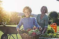Boy with mother in garden carrying basket with vegetables - RBF002005