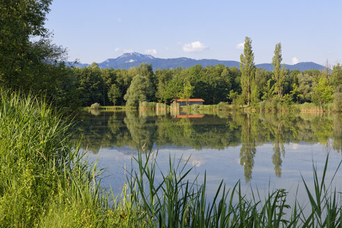Germany, Bavaria, Raubling, landscape with fishing pond - SIEF006299