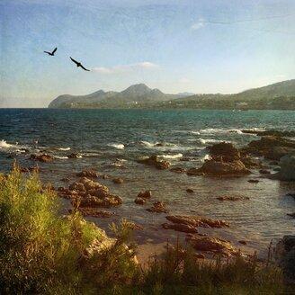 Spain, Majorca, ocean at Cala Ratjada - DWIF000297