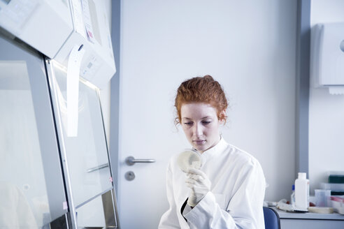 Young female natural scientist working in biochemistry laboratory - SGF001157
