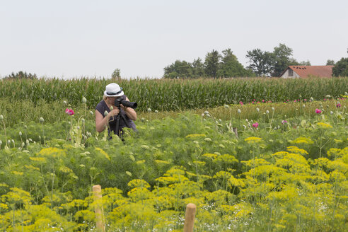 Woman taking picture of flowers on field - MABF000285