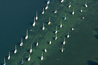 Germany, Baden-Wuerttemberg, Lake Constance, Litzelstetten, aerial view of sailboats - SHF001788