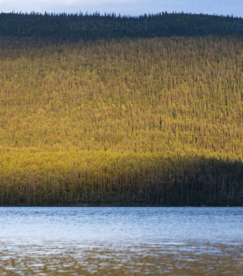 Sweden, Lapland, Norrbotten County, Kvikkjokk, lake Saggat with thick forest - JBF000193 - Jan & Nadine Boerner/Westend61