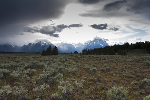 USA, Wyoming, Grand Teton National Park - NNF000128