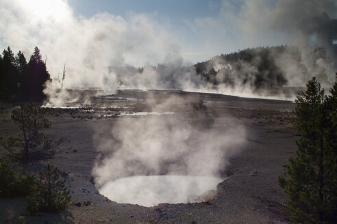 USA, Wyoming, Yellowstone National Park, Geyser field - NNF000143