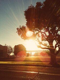 San Francisco, sunrise on Treasure Island - BRF000836