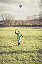 Boy flying a kite on a meadow - SARF001093