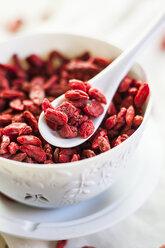 Bowl of Goji berries, Lycium barbarum - SBDF001509
