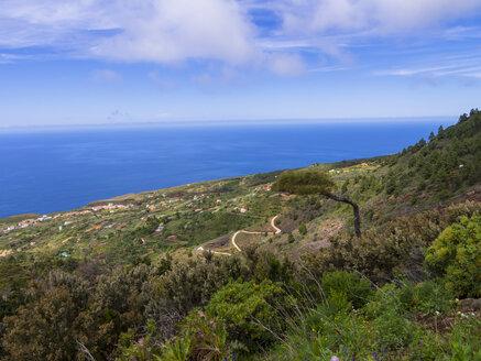 Spain, Canary Islands, la Palma, coast at Garafia - AMF003362