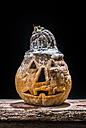 Halloween pumpkin - DEGF000010
