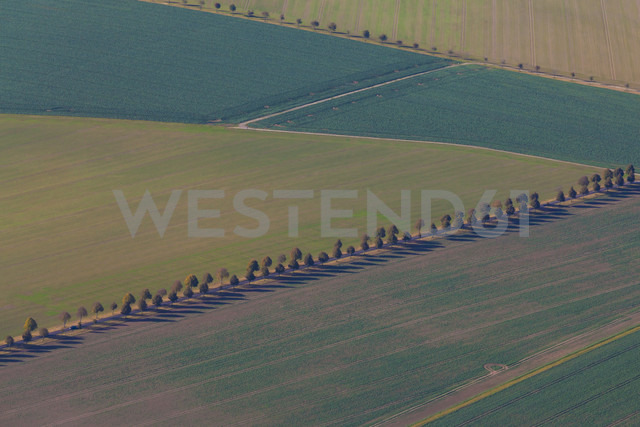 Germany, Baden-Wuerttemberg, aerial view of fields in the Swabian mountains near Pfrondorf - WDF002782