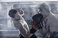 Two boxers fighting in ring - ZEF002496