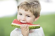 Portrait of little boy eating watermelon - ZEF002760