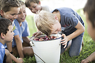 Boy trying to take apple out of bucket with water - ZEF002832