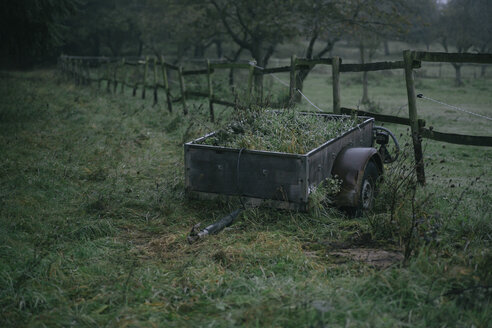 Old trailer standing on a pasture - DWF000216