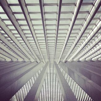 Belgium, Liege, roof of train station - SEG000128