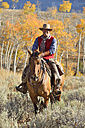 USA, Wyoming, Big Horn Mountains, riding cowboy in autumn - RUEF001307