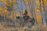 USA, Wyoming, Big Horn Mountains, riding cowboy in autumn - RUEF001337