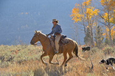 USA, Wyoming, Big Horn Mountains, riding cowgirl in autumn - RUEF001314