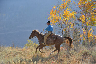 USA, Wyoming, Big Horn Mountains, riding cowboy in autumn - RUEF001320