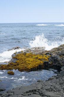 USA, Hawaii, Big Island, Pahala, surging billow splashing on rocks at seafront - BRF000906