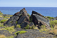 USA, Hawaii, Big Island, Volcanoes National Park, burst lava rocks in front of the sea - BRF000940