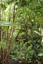 USA, Hawaii, Big Island, Papaikou, direction sign in the rain forest - BRF000965