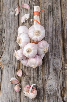 French garlic - ODF000948