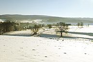 Germany, Bergisches Land, winter landscape - ONF000736