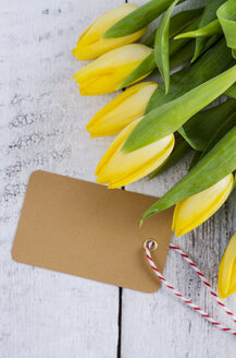 Yellow tulips with blank label - ODF000985