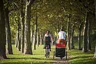 Family riding bicycle in park - PAF001157