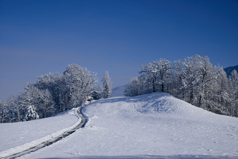 Germany, Kochel am See, snow-covered winter landscape - LAF001380