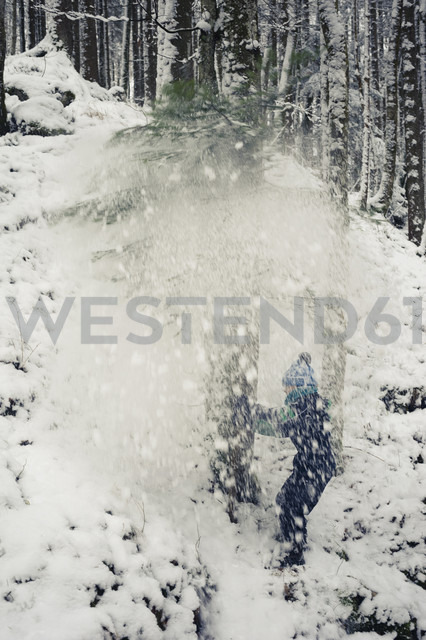 Germany, Bavaria, Berchtesgadener Land, snow falling on boy in woods - MJF001403