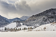 Germany, Bavaria, Berchtesgadener Land, winter landscape - MJF001410
