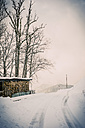 Germany, Bavaria, Berchtesgadener Land, rural road in winter landscape - MJF001420