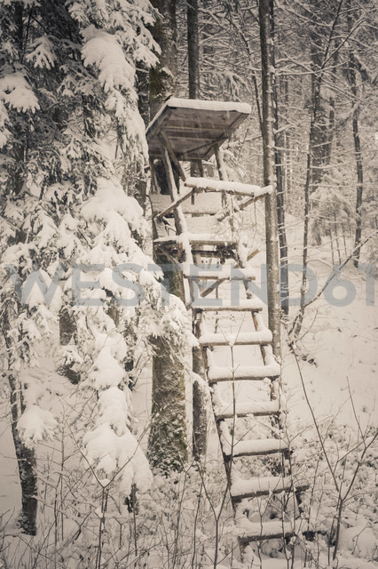 Germany, Bavaria, Berchtesgadener Land, raised hide in winter landscape - MJF001425