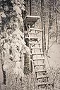 Germany, Bavaria, Berchtesgadener Land, raised hide in winter landscape - MJF001425
