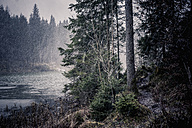 Germany, Bavaria, Ramsau, snowfall at Hintersee - MJ001437
